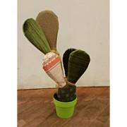 piante-di-pezza-3