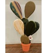 piante-di-pezza-4