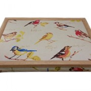 vassoio-cuscino-uccellini