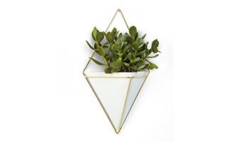 vaso da parete in ceramica umbra