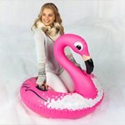 flamingo snow tube