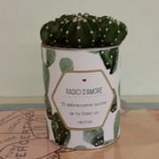 cactus-san-valentino-ti-abbraccerei-anche