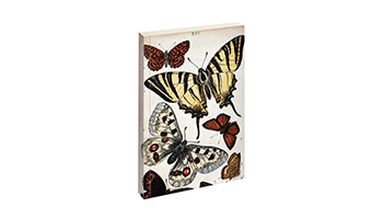 notebook-butterfly-vintage-biologica