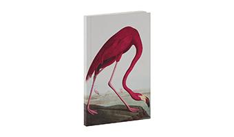 """Notebook """"Biologica"""""""