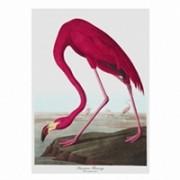 straccio-flamingo-stoffa-biologica