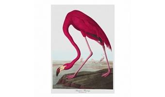 """Strofinaccio """"Botanica"""" flamingo"""