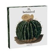 vassoio-ceramica-magpie-cactus-packaging