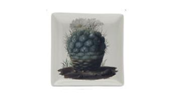 """Piatto rettangolare ceramica """"biologica"""""""