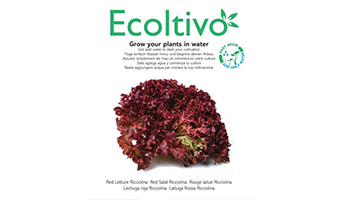 ecoltivo-pianta-idroponica-lattuga-riccia-rossa