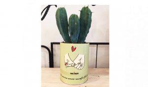cactus in barattolo con messaggio