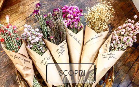 fiori secchi felici