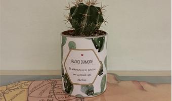 Radici D'Amore Cactus con messaggio