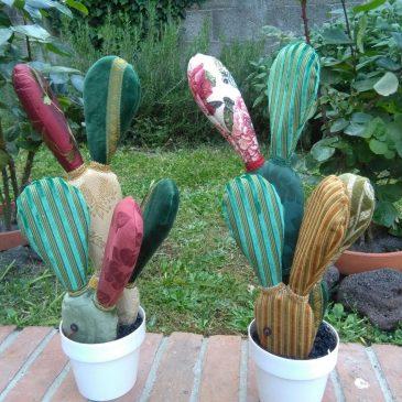 Cactus di pezza, le piante di Elio non bastano mai