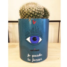 Cactus con messaggio cactsu in barattolo